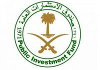publicinvestmentfund